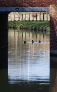 Through Shireoaks bridge