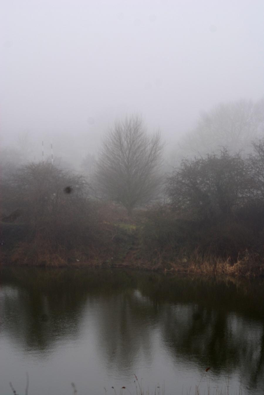 (Mist over Godfrey's pond)