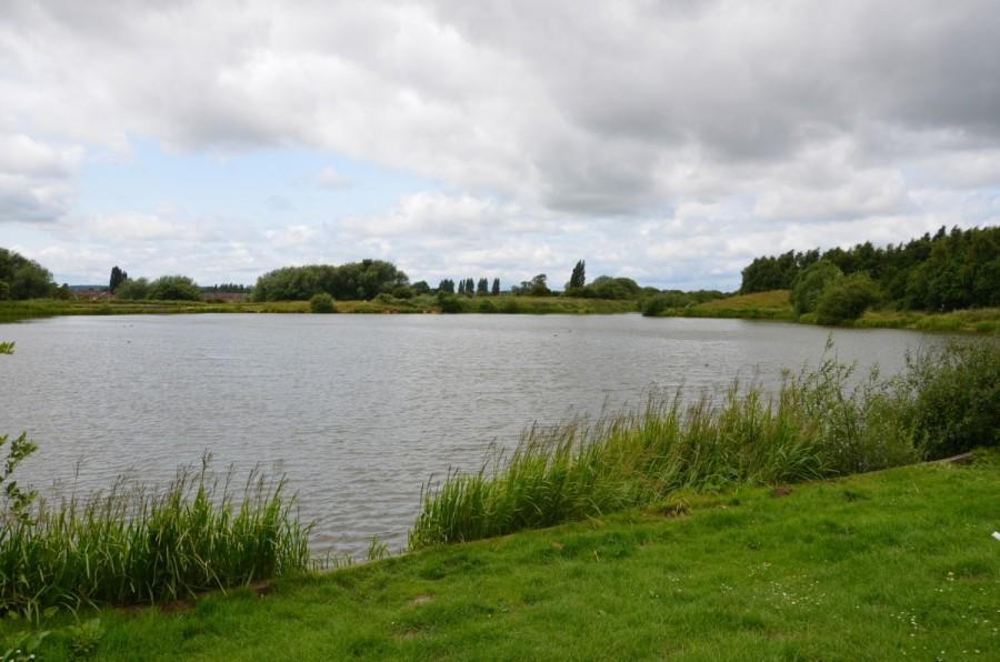 Godfrey's pond