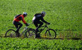 DSC_6875Cyclists
