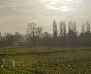 Rural look