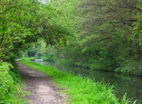 Green waterway