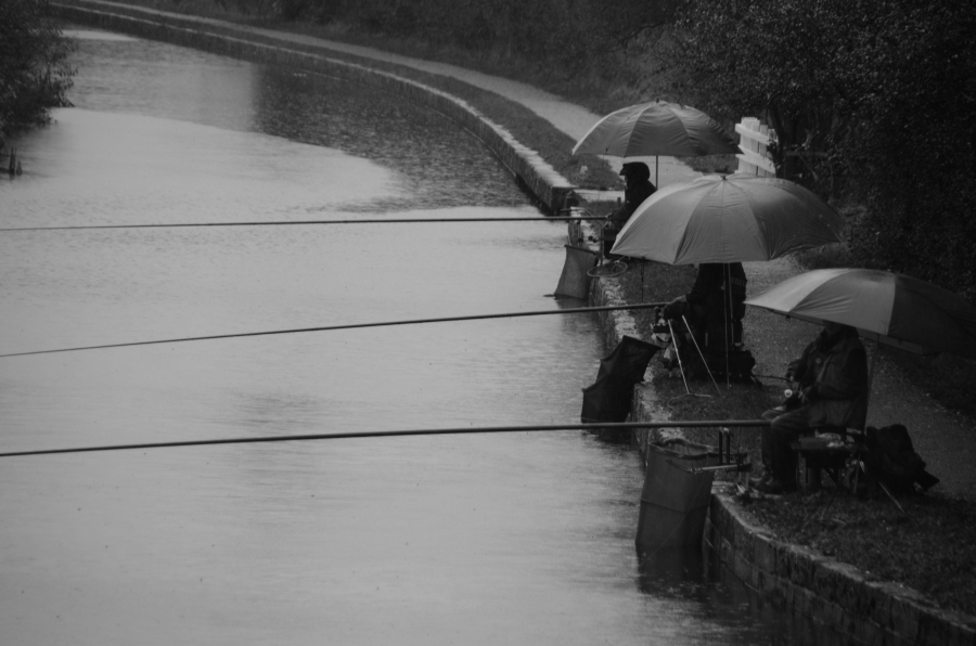 Anglers in the rain