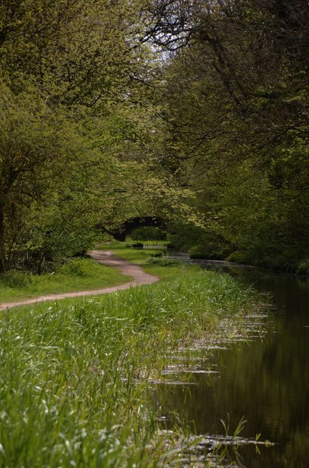 Thorpe Bridge