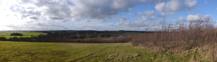 View from Shireoaks Woodlands