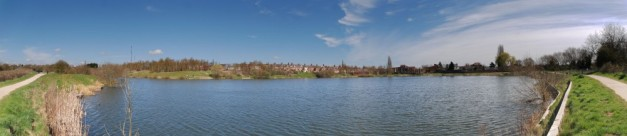The pond again