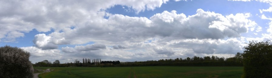 Field and clouds