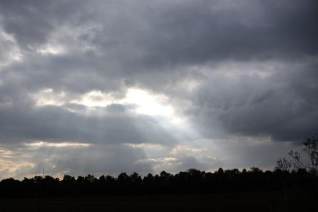 Sky with sunlight rays